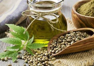 Користь і шкода конопляного масла: як правильно приймати продукт, щоб зміцнити здоров'я