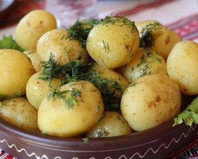 Дієта на картоплі: як схуднути від 2 до 10 кілограмів на улюбленому продукті