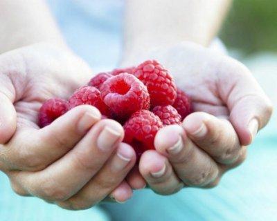 Зміцнює імунітет і судини, але викликає діарею: користь і шкода малини для організму