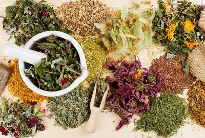 5 найкорисніших лікарських трав