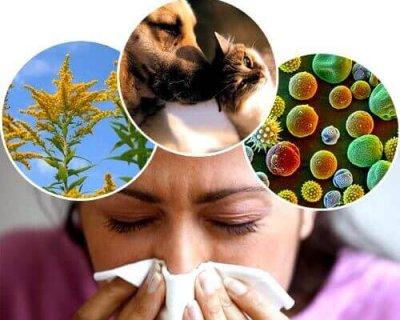 10 питань алергологу: про шкоду стресу, небезпечну їжу і правильний захист від пилку