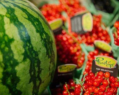 Сеть супермаркетов Ultramarket — принципиально новый формат продовольственных магазинов